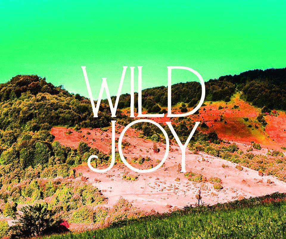 wildjoy